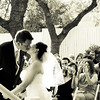 Rowell Wedding : 4 galleries with 606 photos